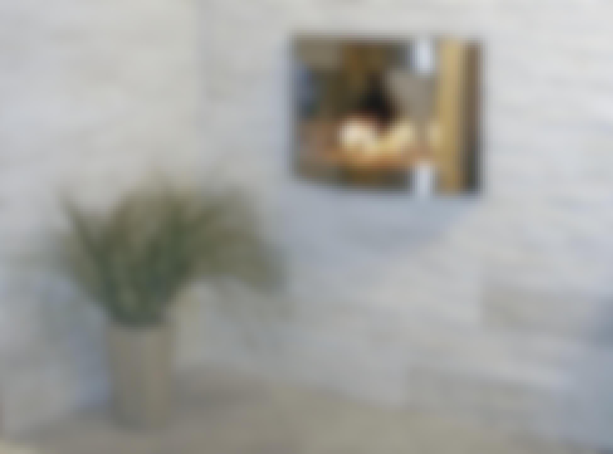 **NATURFLISER (HÅRDE)** Hårde natursten som granit og skifer er robuste materialer, der også kan lægges i rum med stor slitage, og de er nemme at holde rene. Store fliser af sort skifer eller granit har i årtier været brugt på gulve.