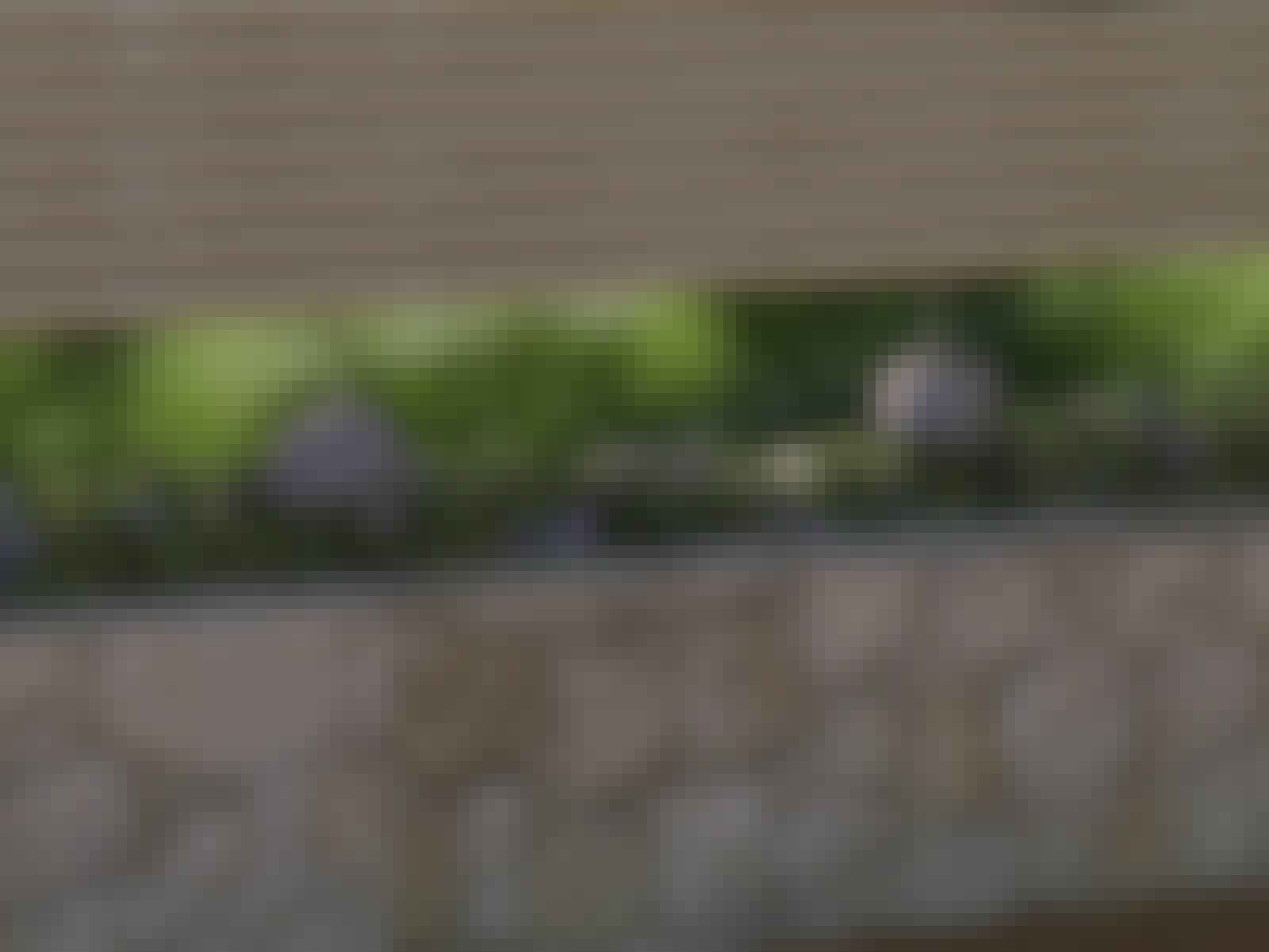 altan japanskt staket