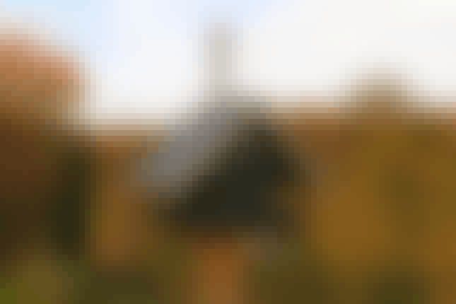 Fågelbord – så fina kan de vara 4