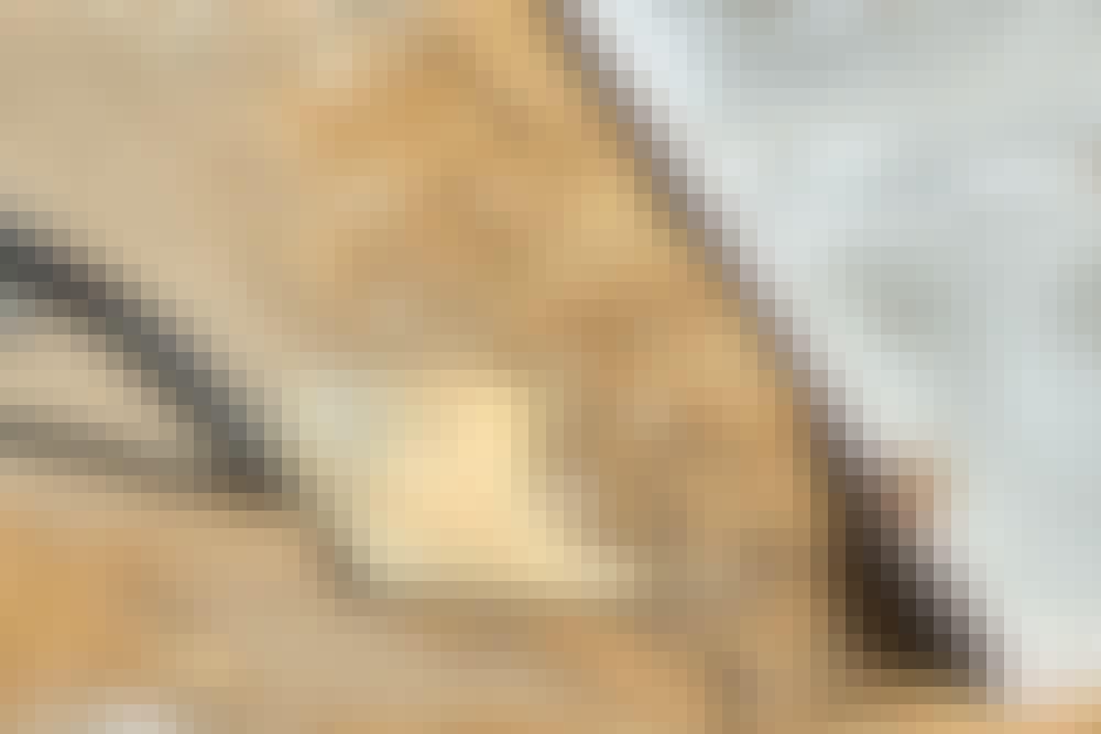 Kantsikring fliser: Sådan laver du kantsikring med usynlige kanter