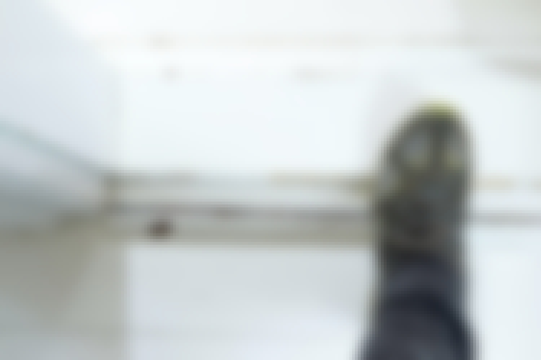 Knirkende dørterskel – slik fikser du det