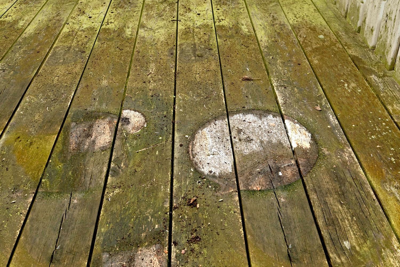 fjern alger på træterrasse