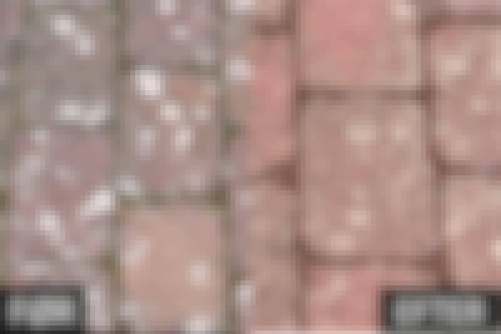 Flisepest: Brun sæbe er ikke effektivt mod flisepest
