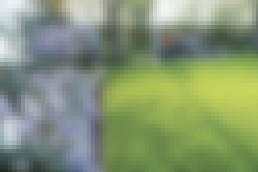 Styr-gräset-med-skarpa-staalkanter