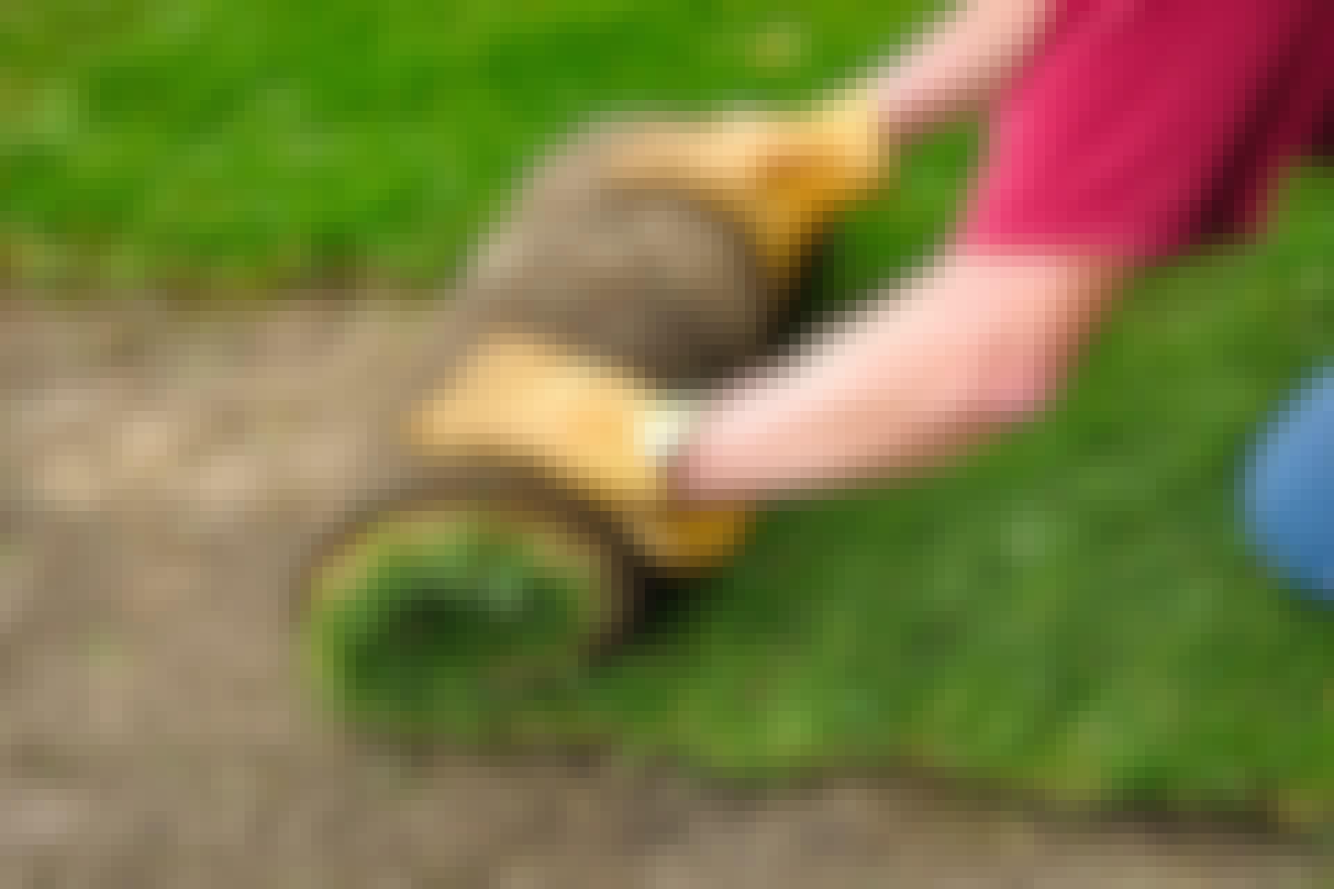 Rullegræs - læg en hel have på en weekend