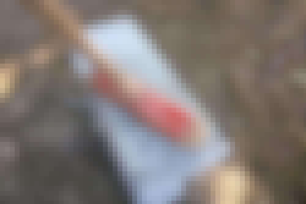 Monteringslim: Slik limer du med monteringslim