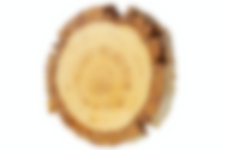 8 vackra nordiska träslag