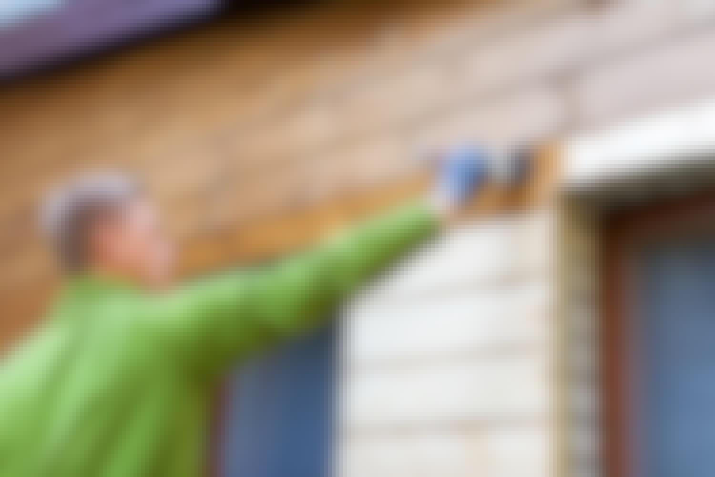 Tryckimpregnerat trä: När ska det målas?