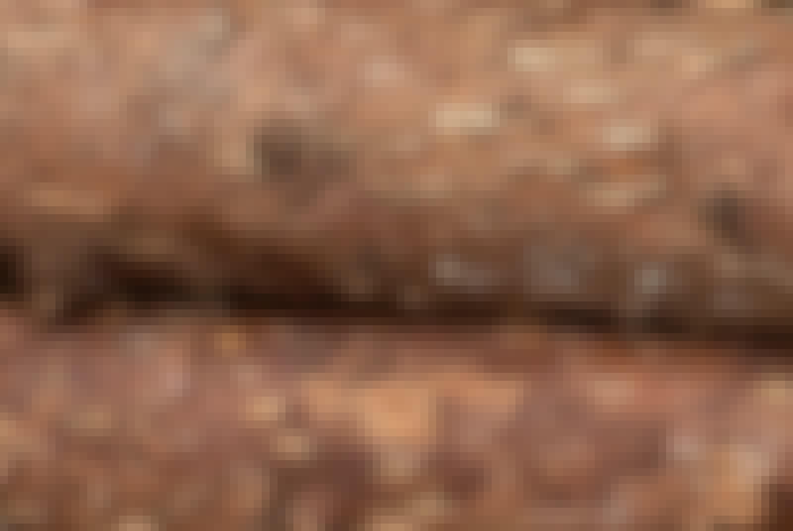 Ranka-aita: Kuusirankoja