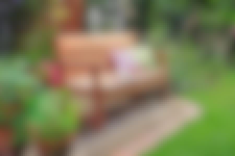 Klassisk trädgårdsbänk: Så här bygger du den