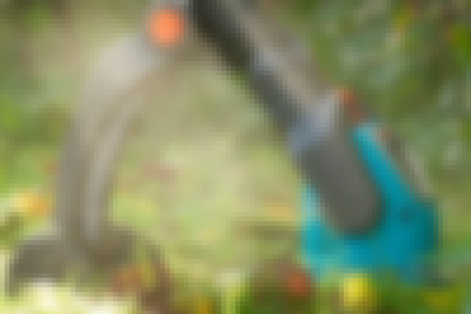 Trimmeri: Akku-, sähkö- vai bensamalli?