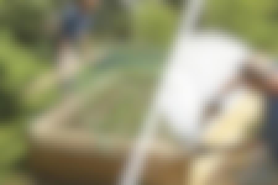 Högbädd växthus: Så bygger du en högbädd med växthus