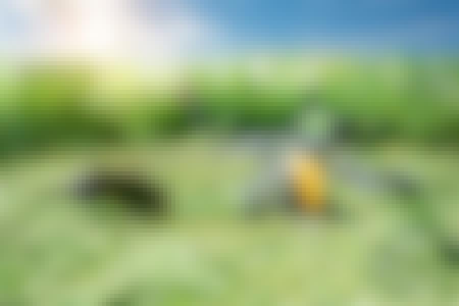 Ruohonraivaussaha: Muista turvallisuus, kun käytät ruohonraivaussahaa