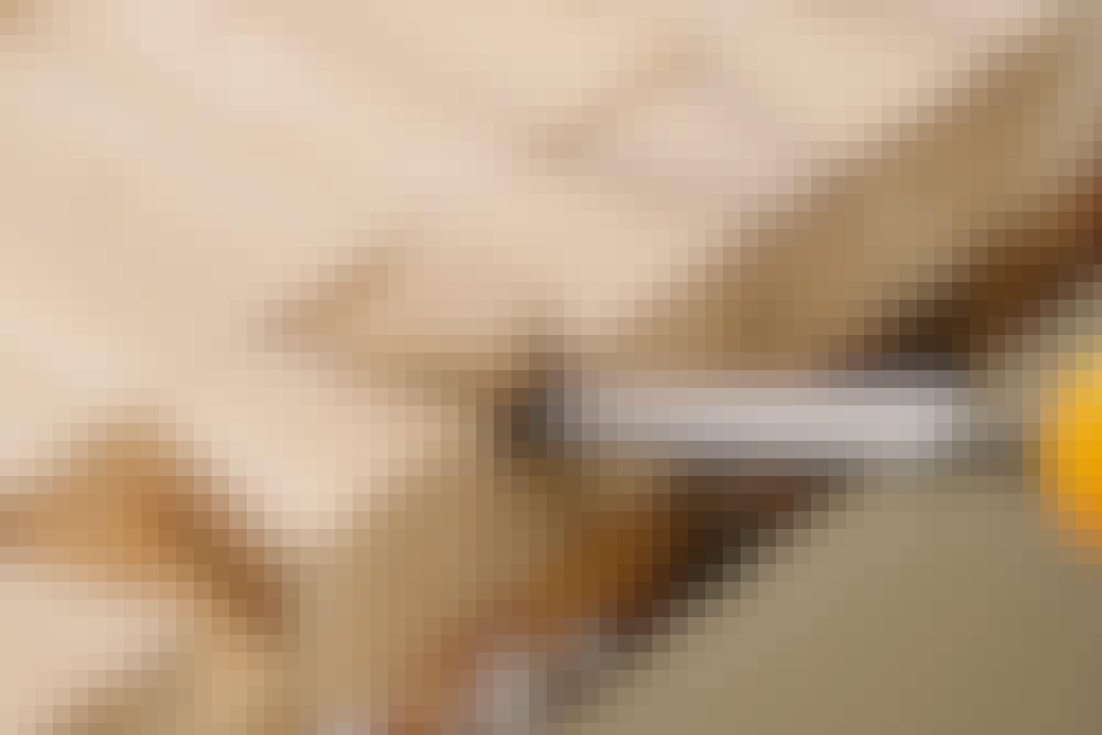 Svalehaleskjøt: Huldelen - opmerkning og utstemming