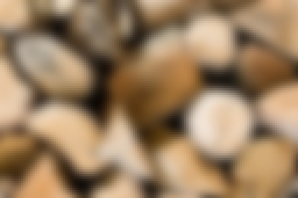Nuotion polttopuut: Käytä näitä puulajeja