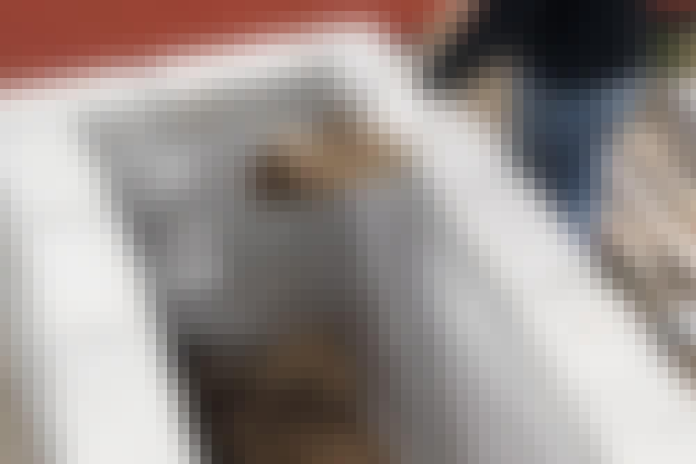 Kuitukangas: Kohopenkissä
