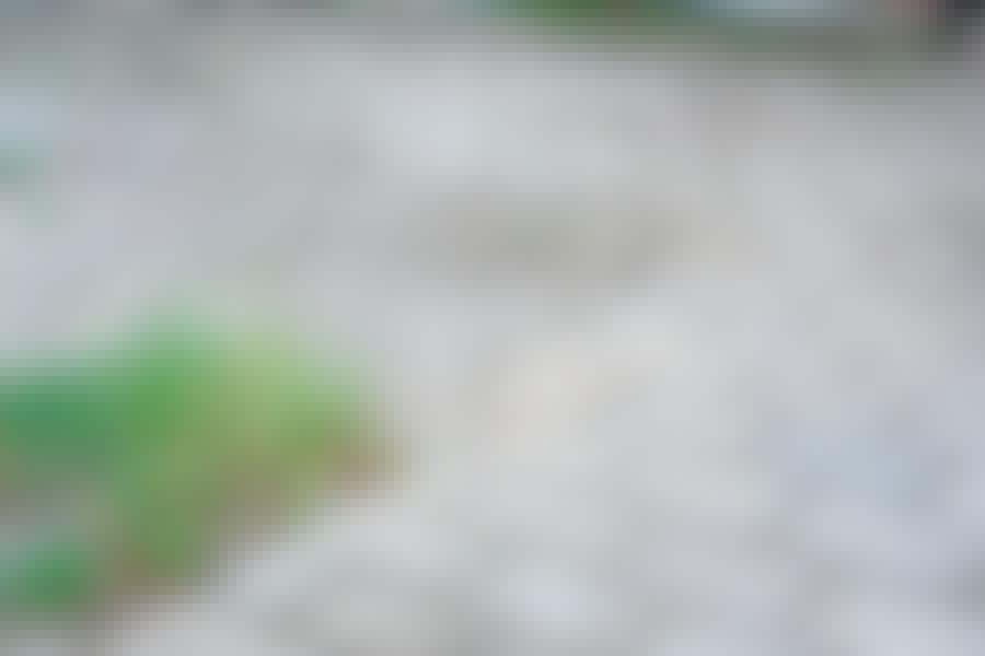 Murske: Murske kiveyksen alla