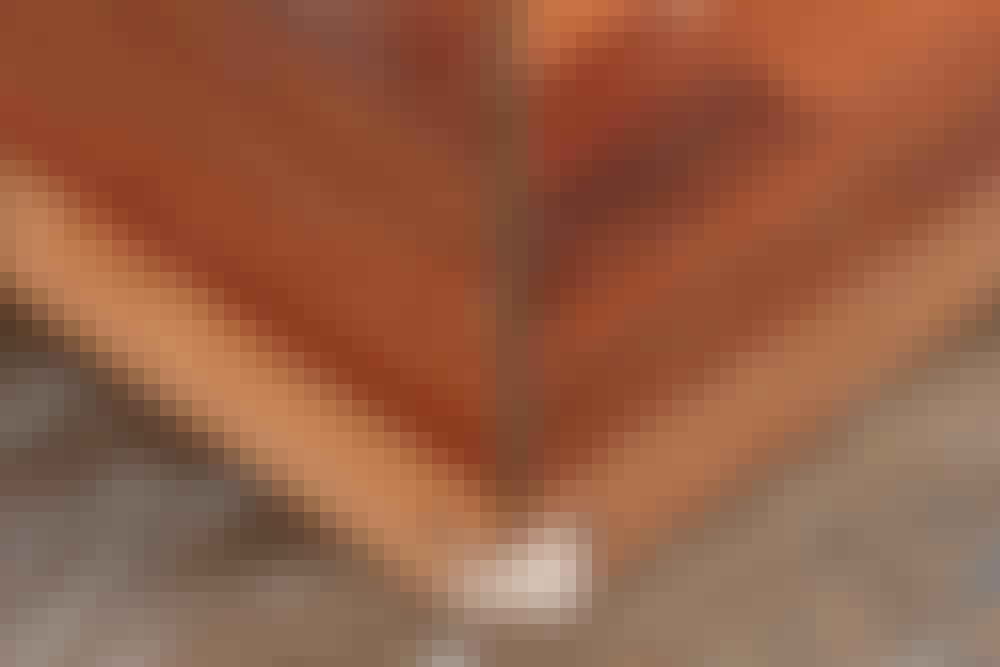 Overfres - Frest spor til skjøt med løs fjær: Fress slissen på samme side av begge platene