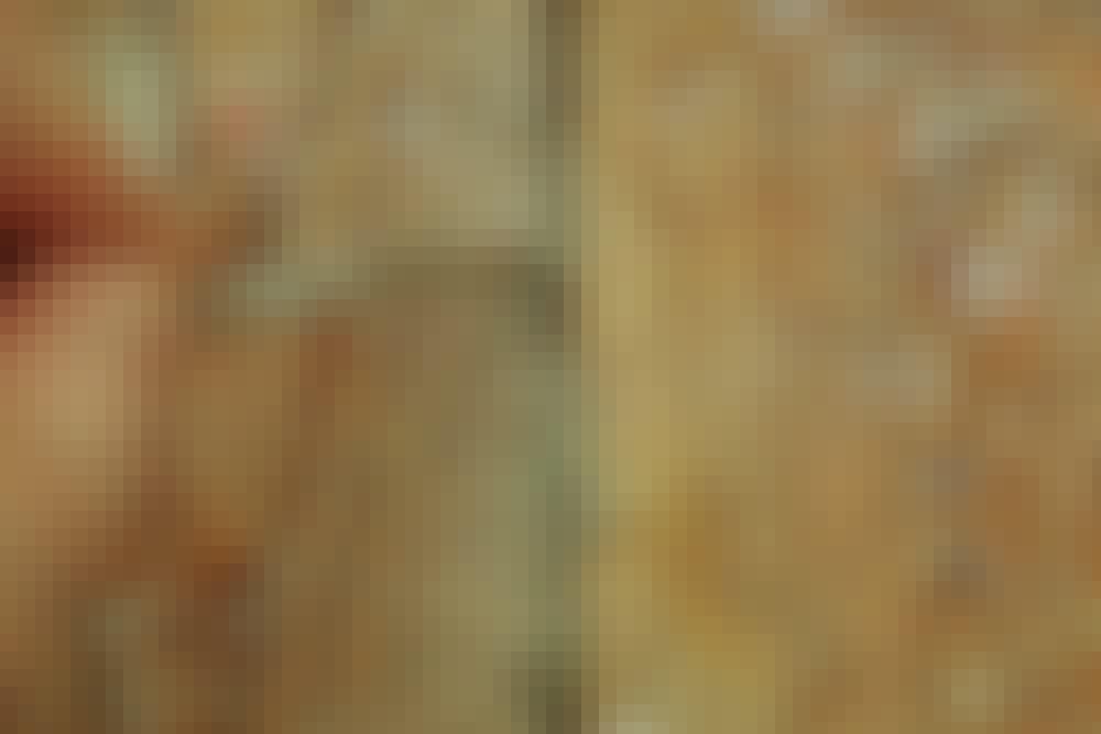 Male tregulv: På et plankegulv er det viktig å være nøye med å krafse fugene rene og støvsuge grundig.