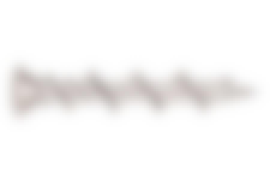 Gipsskruer: Gipsskruer til ophængning uden brug af plugs har et meget groft gevind, som kan gribe i den porøse plade. Et eksempel er denne Wall Dog fra DeWalt. Skal du hænge tunge ting op, bør du dog vælge en speciel gipsplug eller et gipsanker.