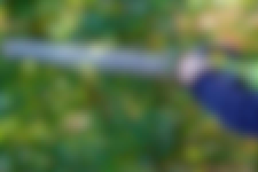 Elektrisk häcksax: Den starkaste deltagaren klipper grenar på upp till 34 mm.