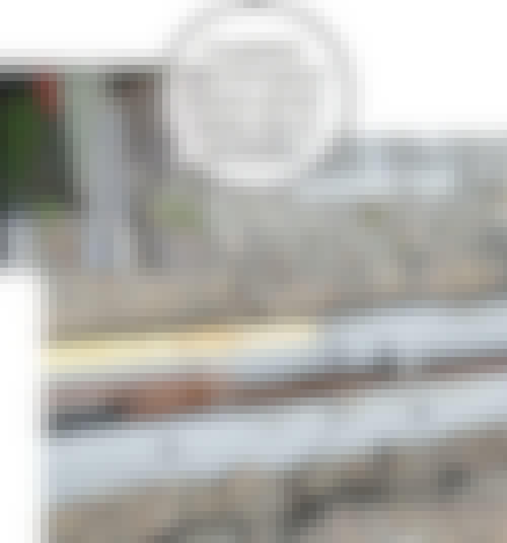 Skydeport: Kamstålet (B) slås i jorden.