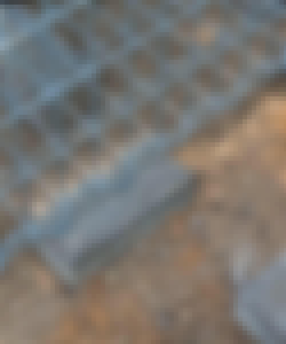 Gabion: Burarna ställs på plattor.
