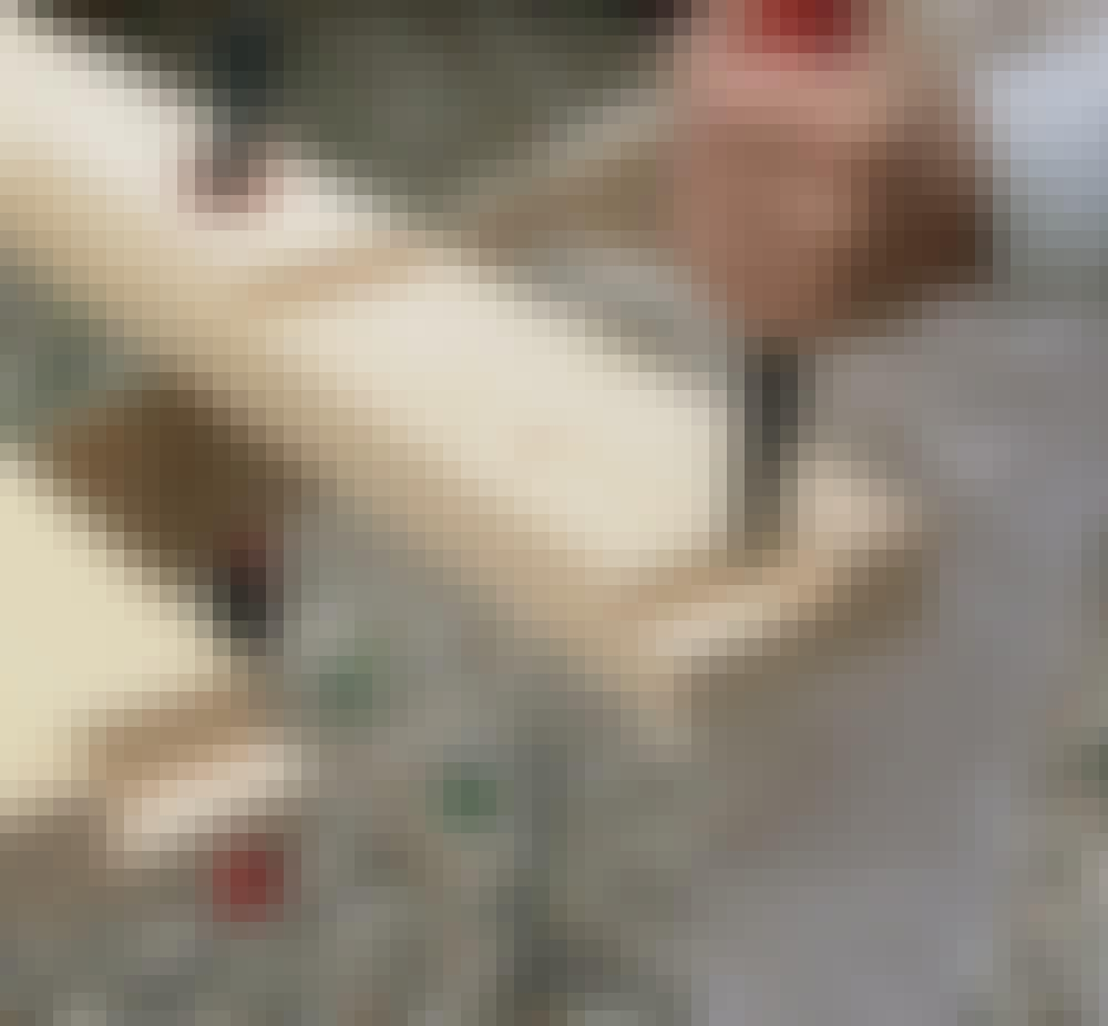 Glastak: Avgränsa urtaget genom att sticka eller slå ner stämjärnet längs strecket.