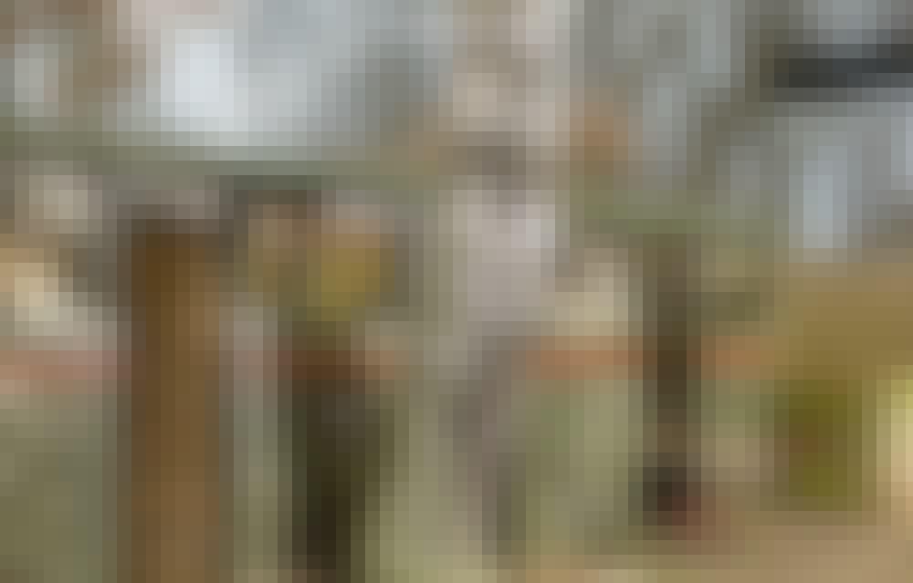 69410_NO_C_8_2009_1_1a.jpg
