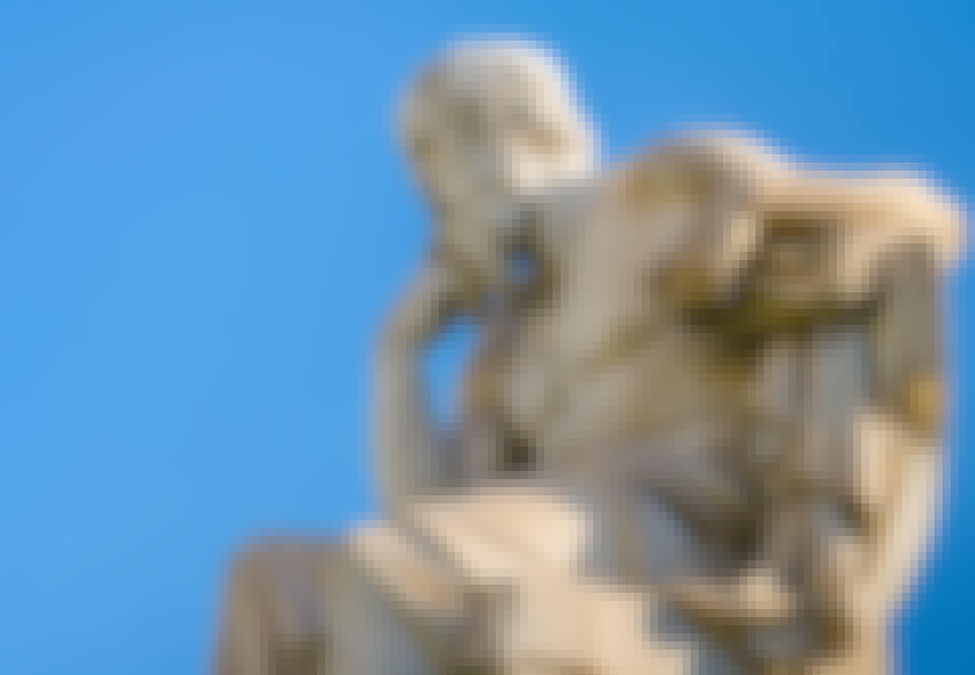 sokrates grækere filosofi