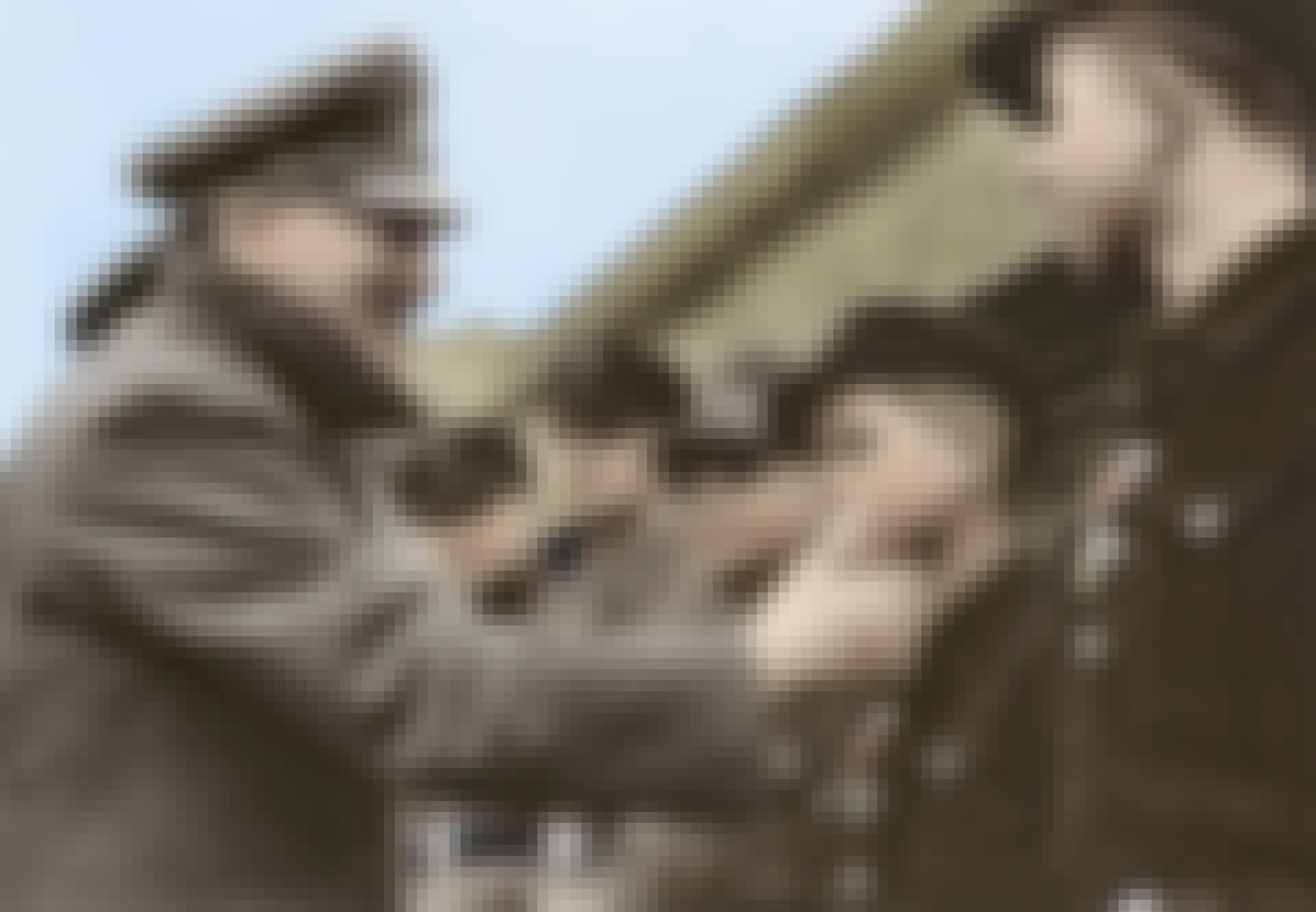 Hitler og Hitlerjugend