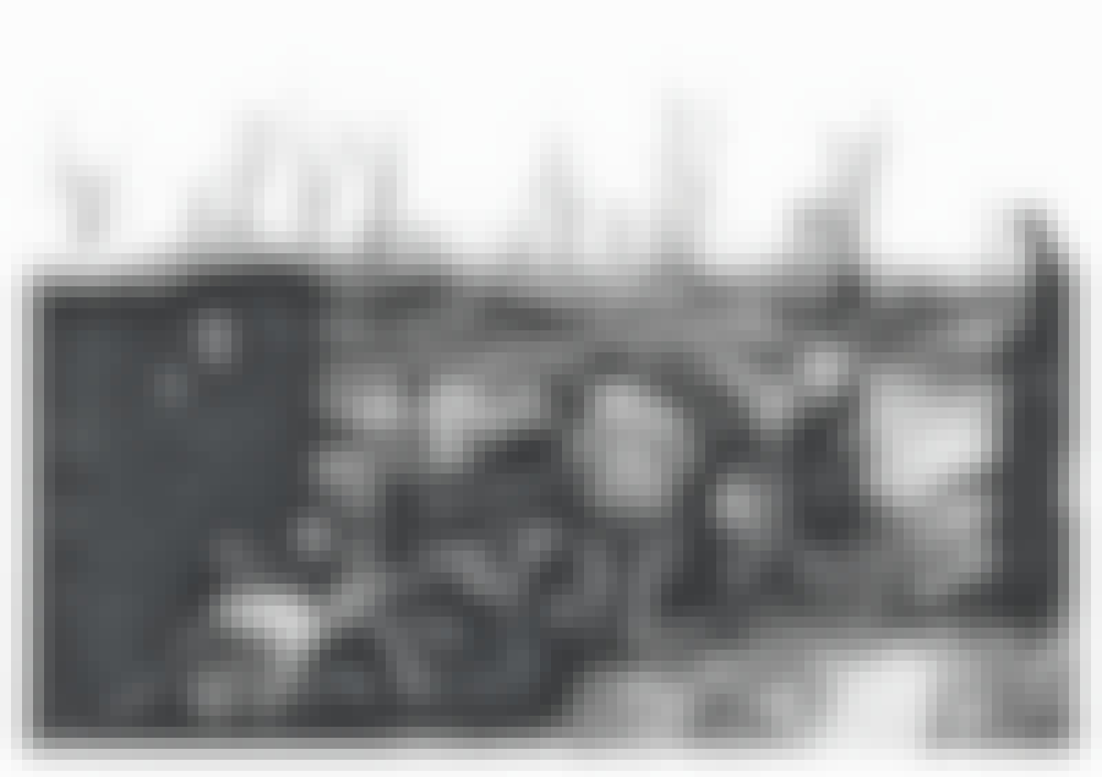 Fangene bygde Birkenau