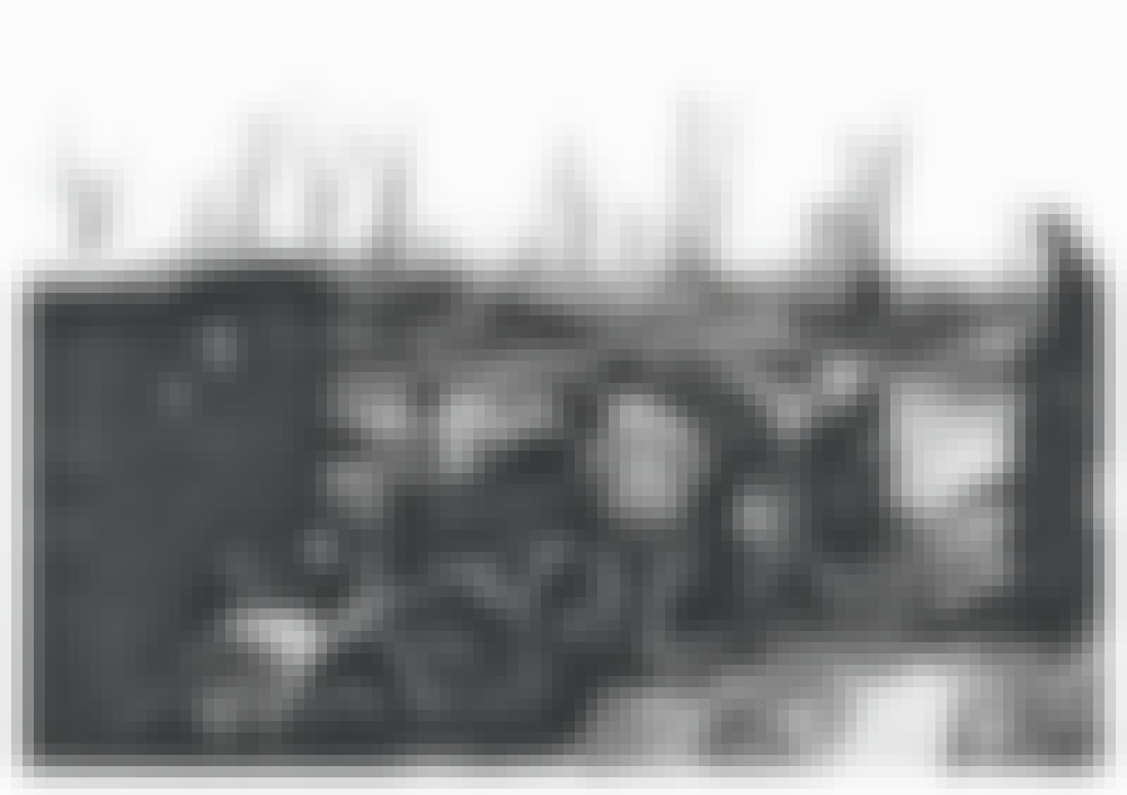 Vangit rakensivat Birkenaun