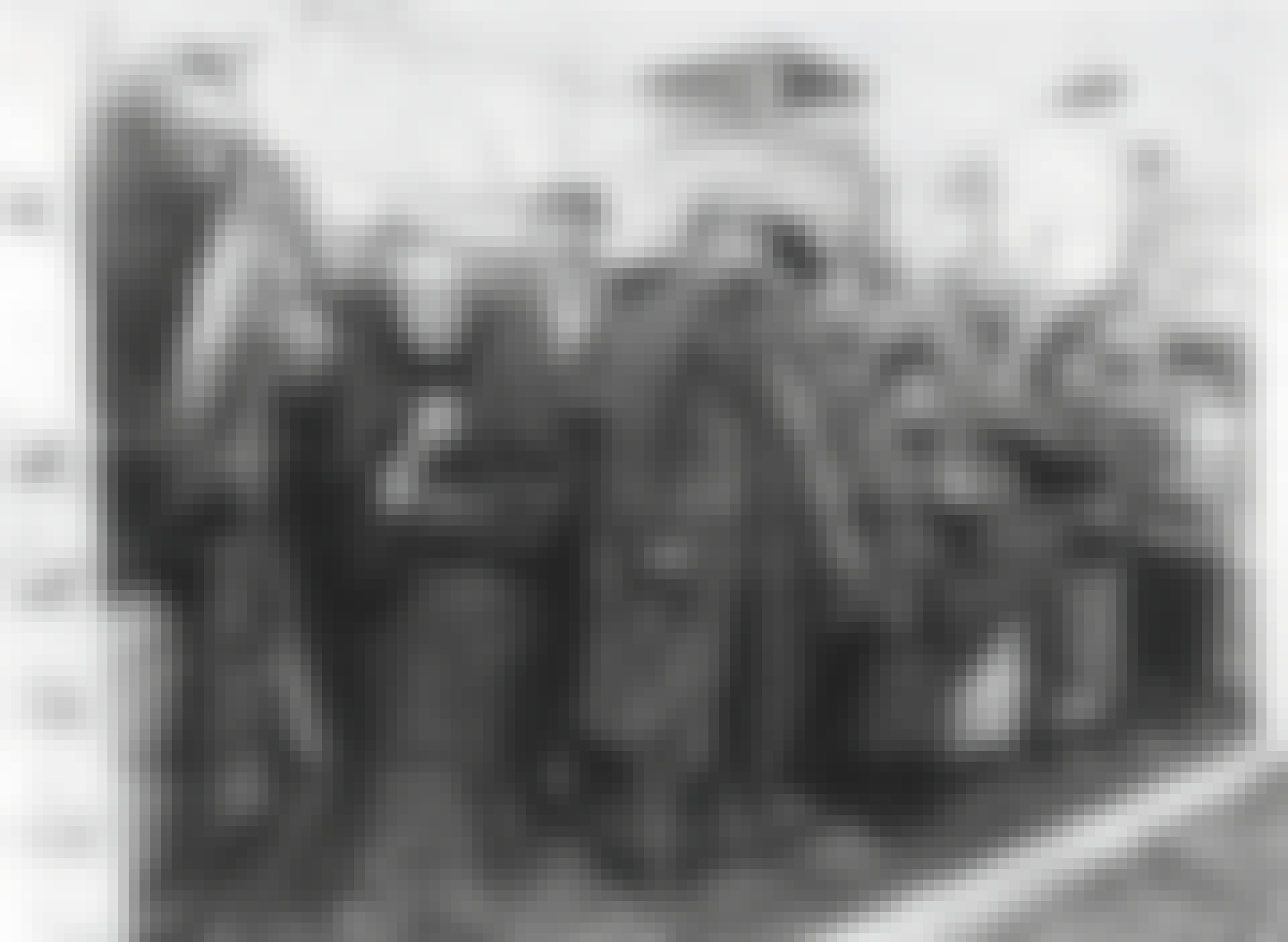 Puna-armeija löysi Auschwitzin vangit