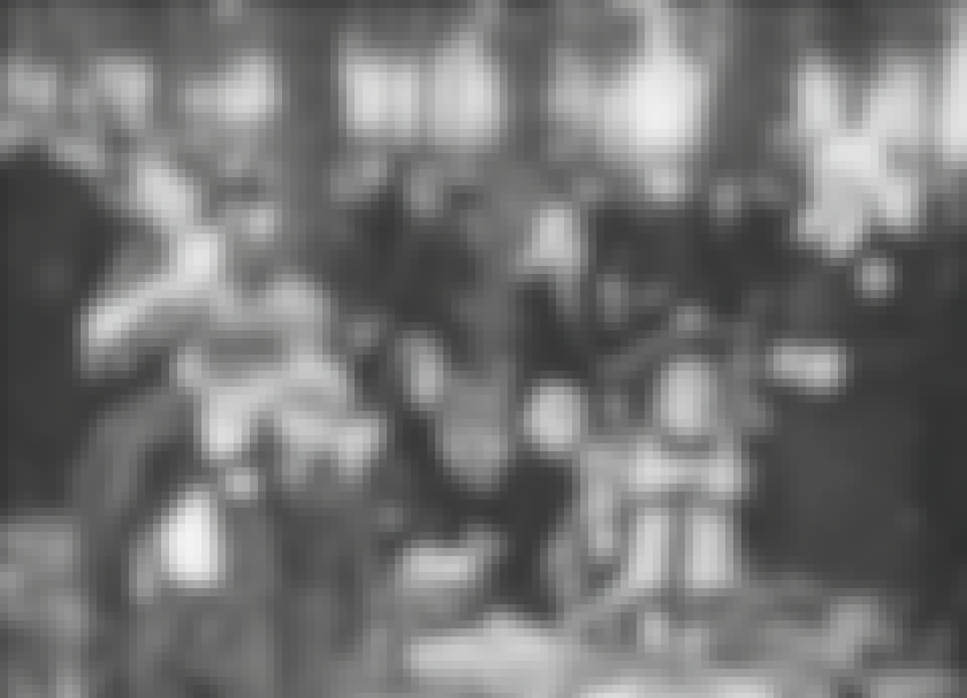 Ungarske jøder i Auschwitz