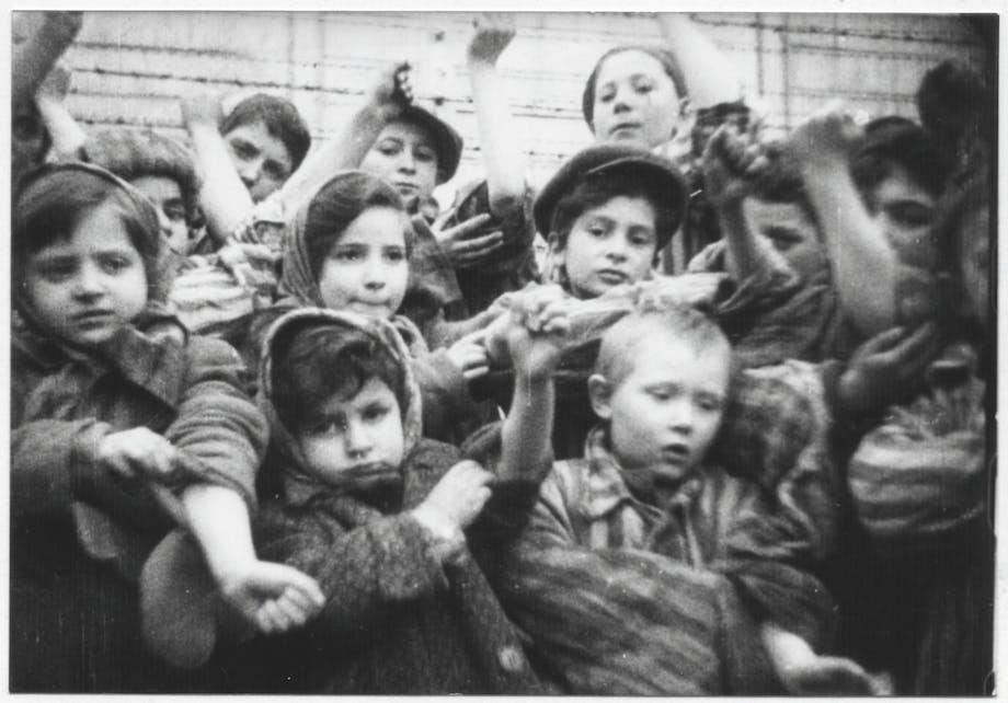Auschwitzs børn