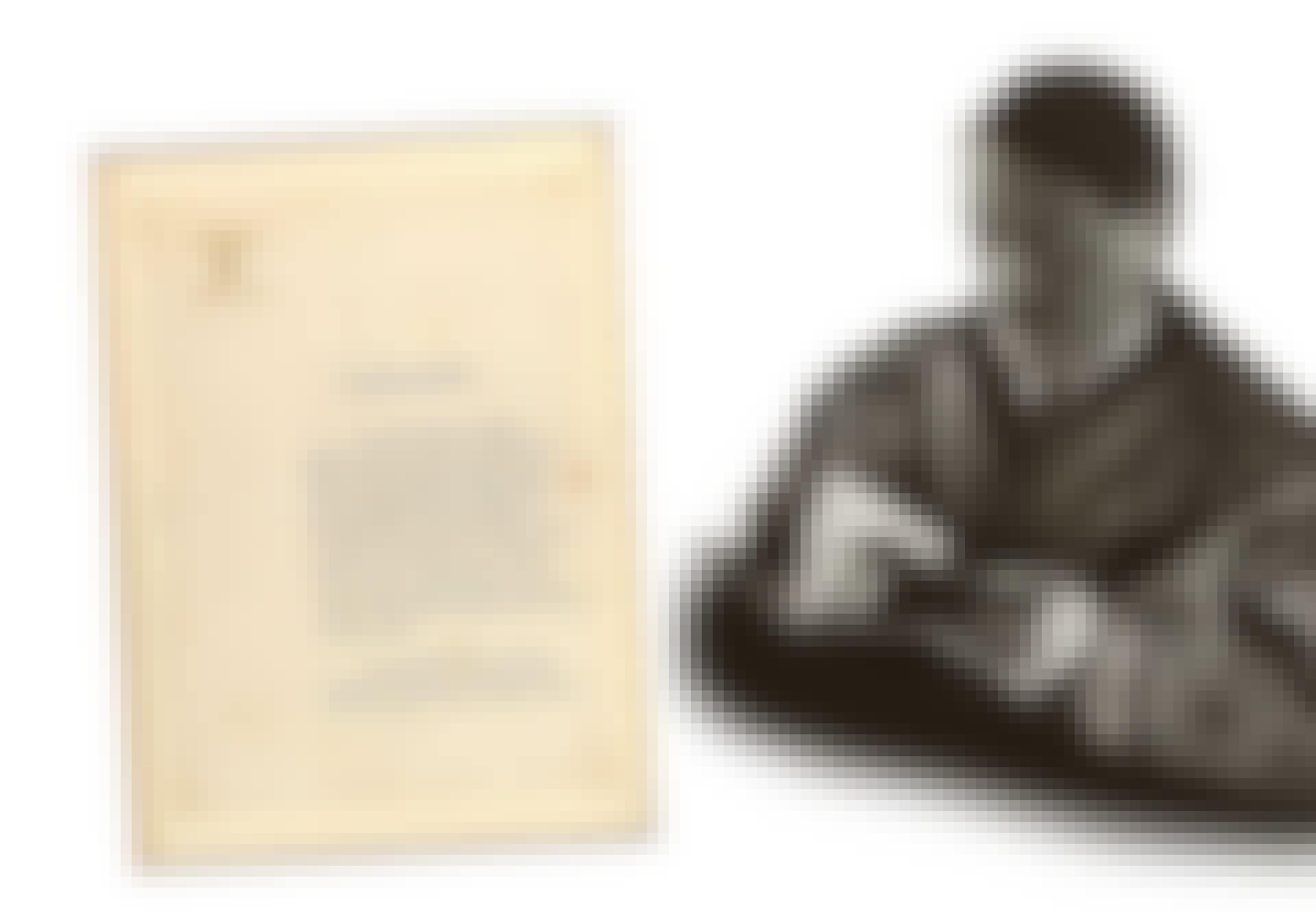Hitler testamente