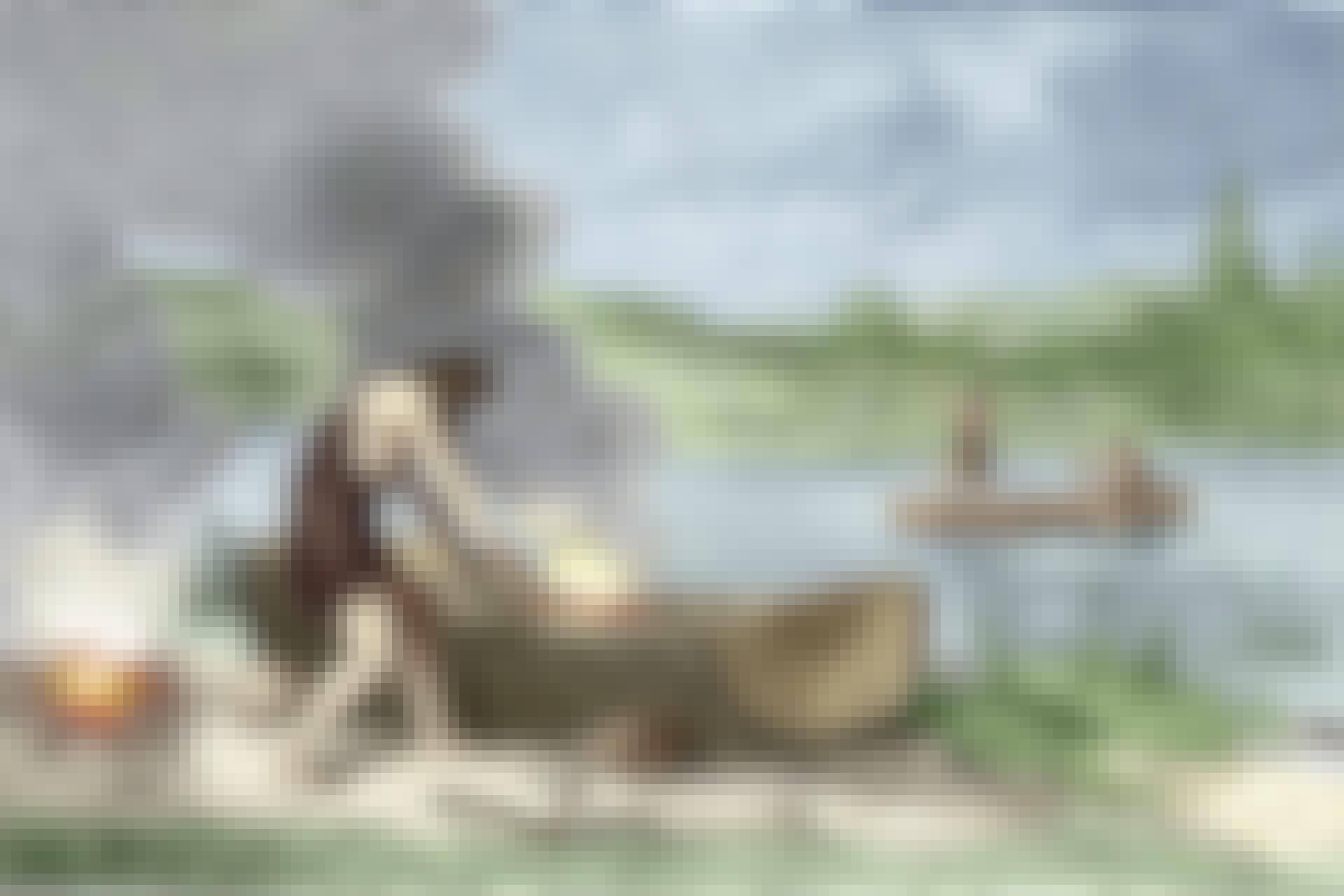 Med yxa och eld kunde stenåldersmänniskan gröpa ur trädstammen och få en kanot.
