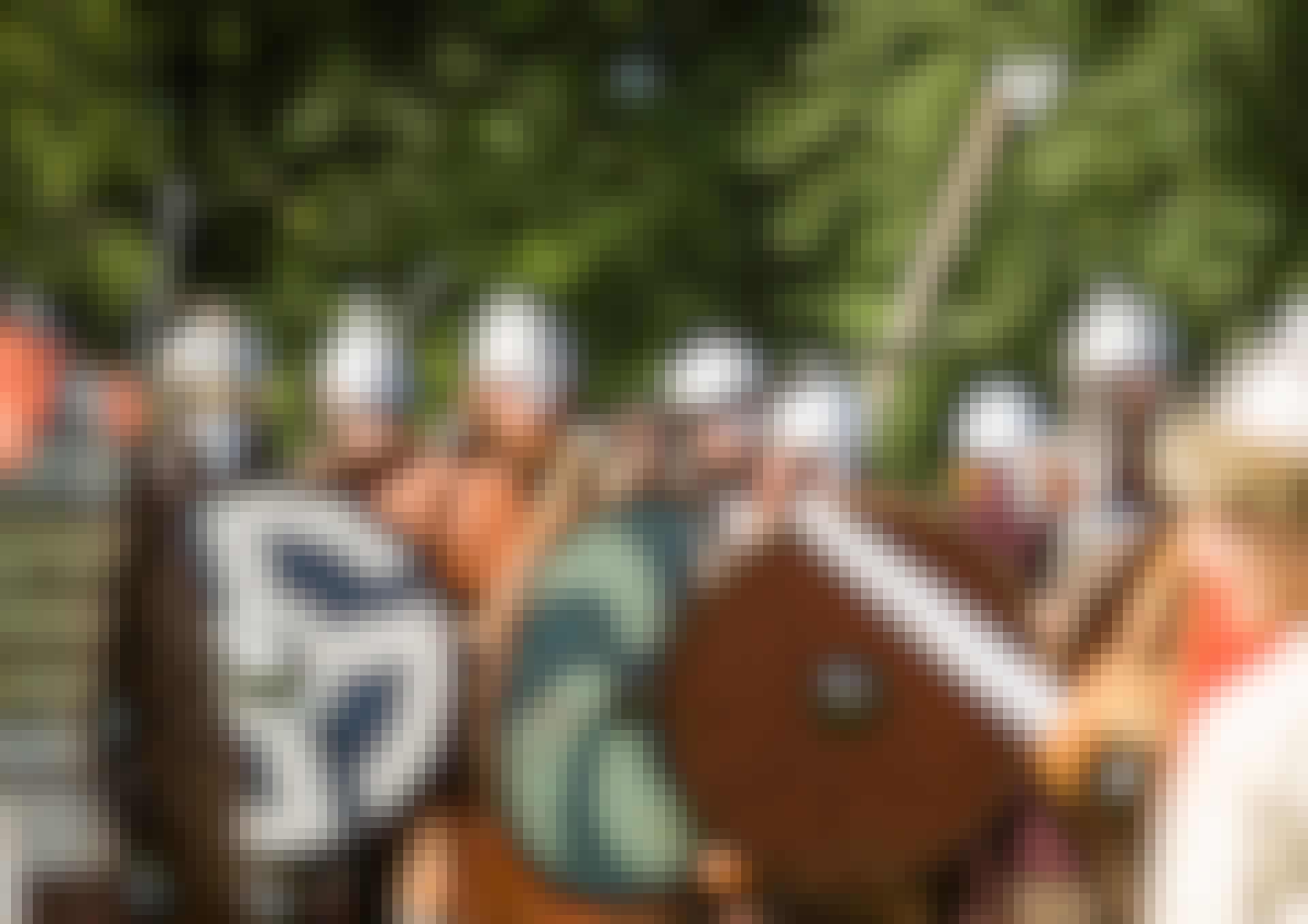 Vikingar ute på tur