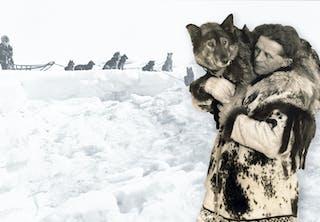 Seeruminkuljettajat Alaskassa 1925.