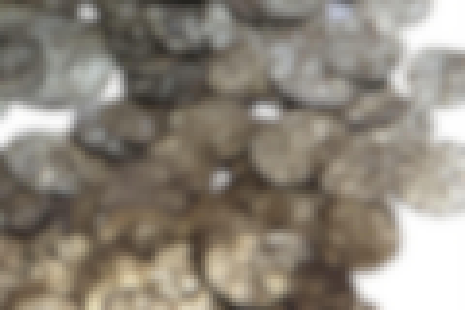 Hidden silver