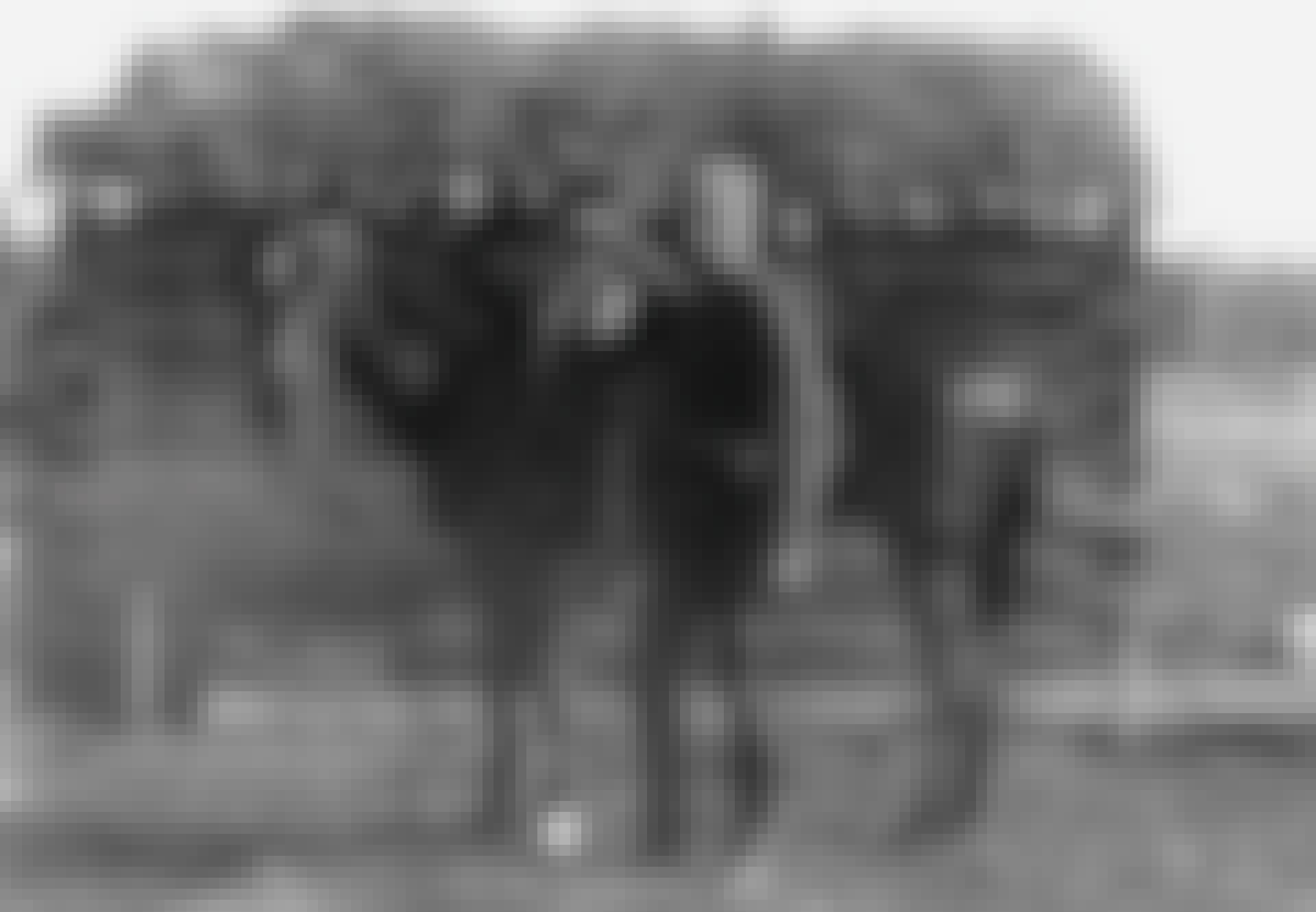 RCMP circa 1900