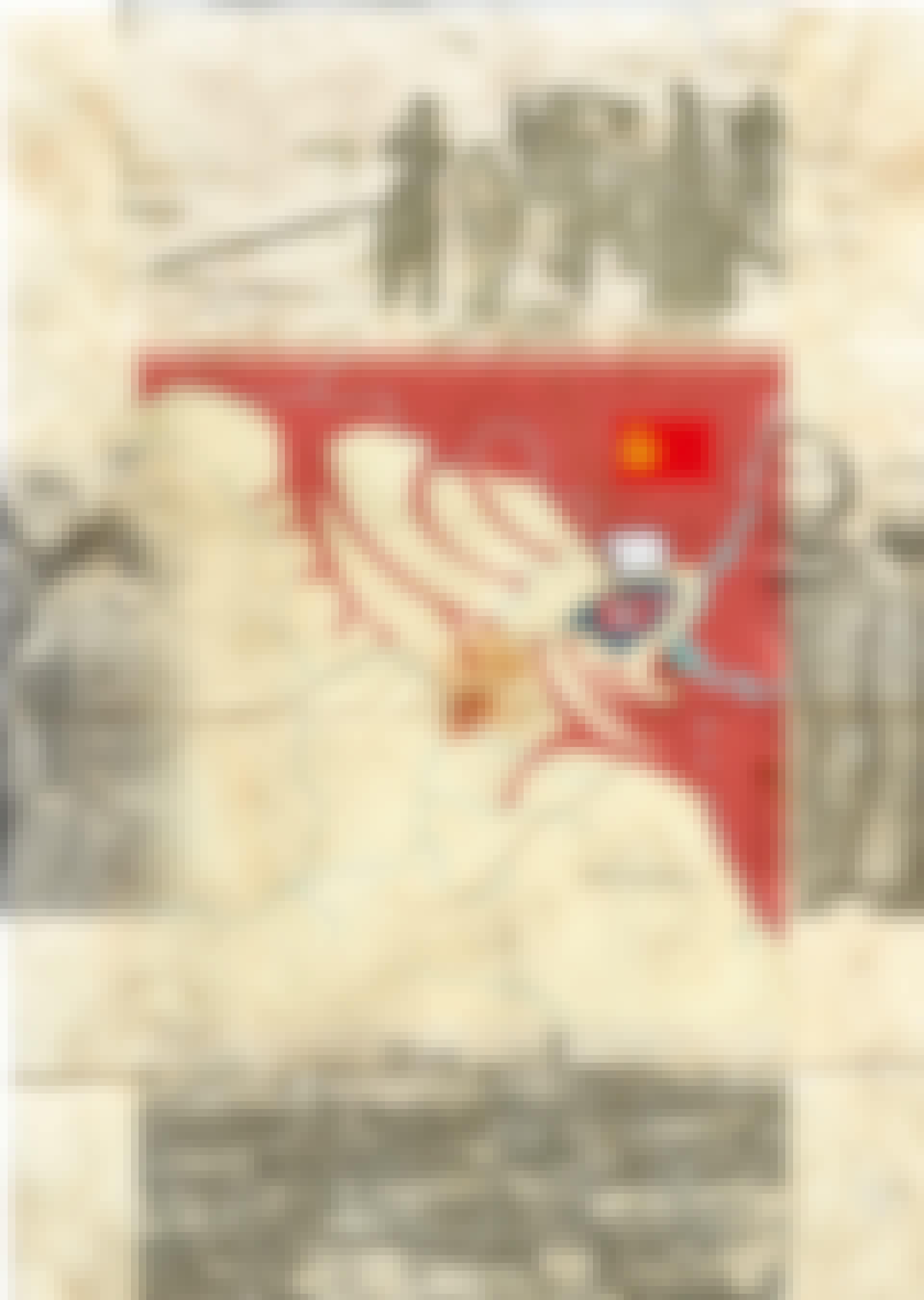 Stalingrad strategiakartta4