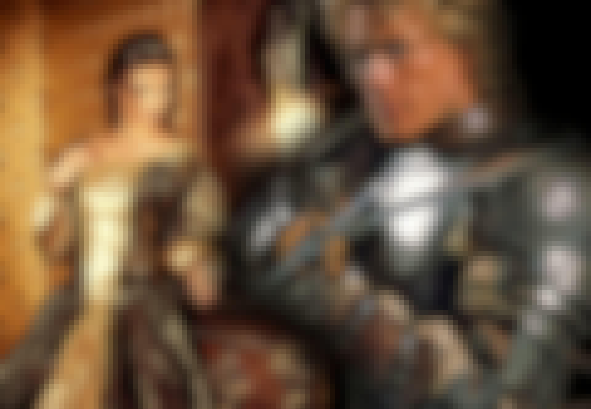 collage af ridder og skømjomfru