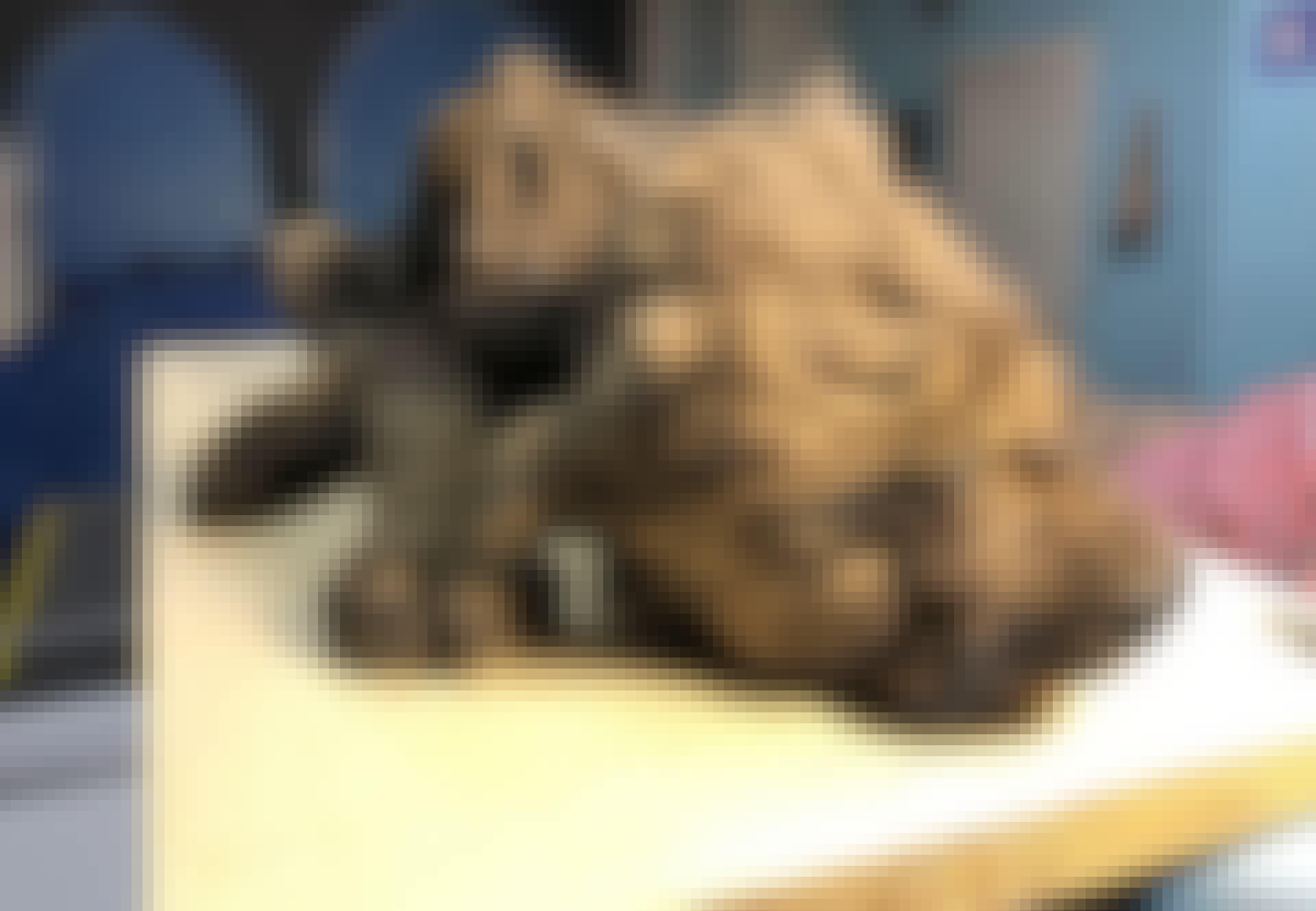 Pup Siberië permafrost