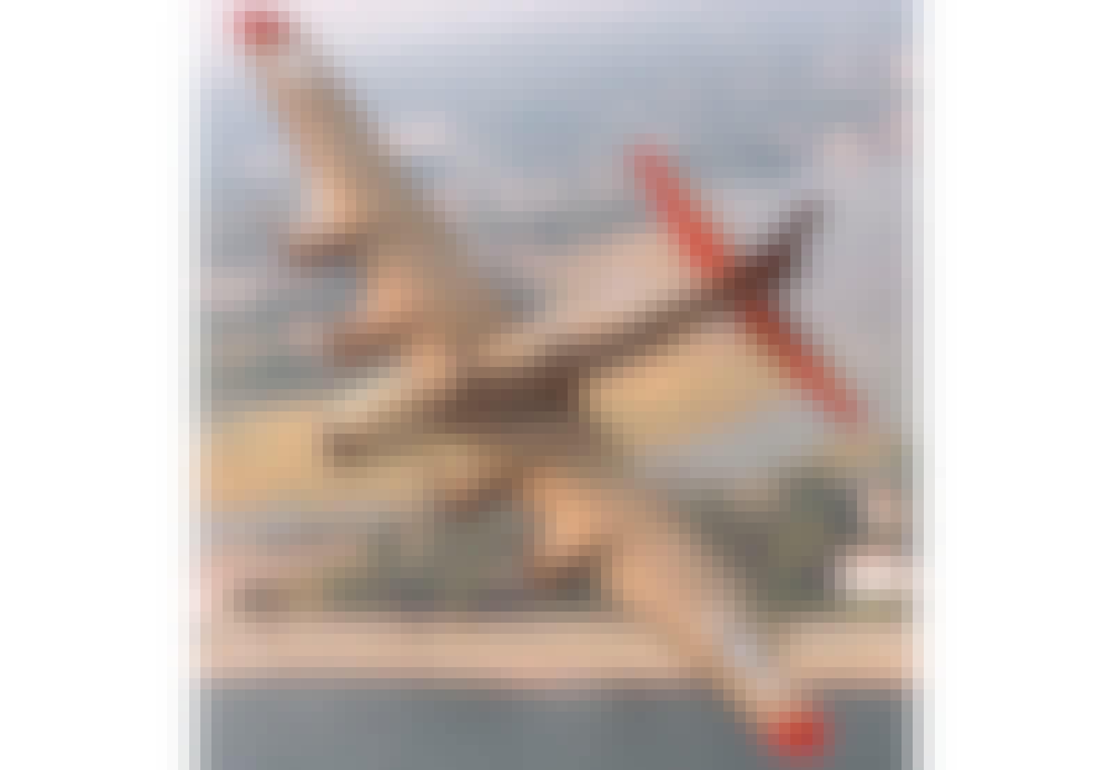 b-17 uppvisning
