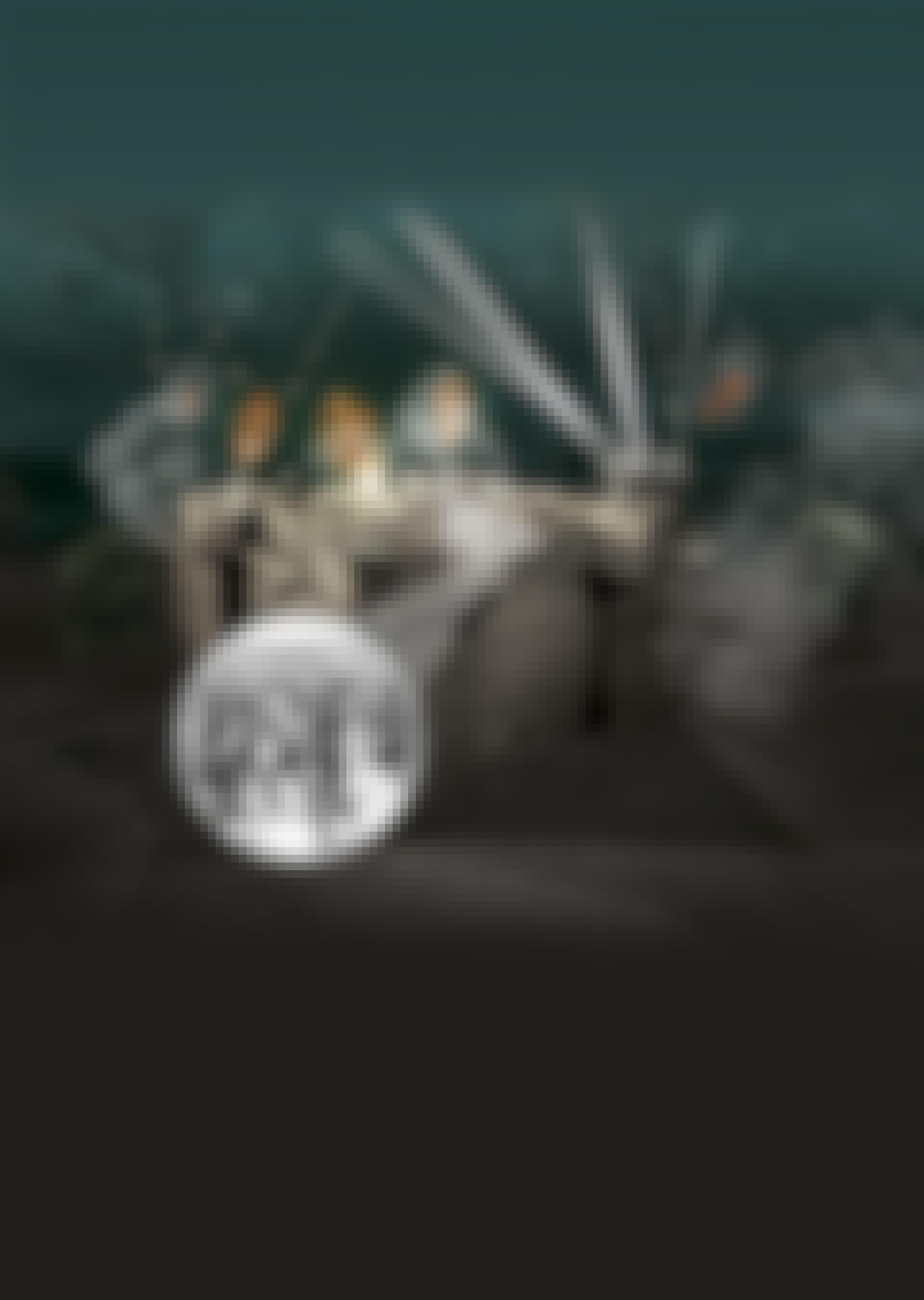 soldaten flaktoren