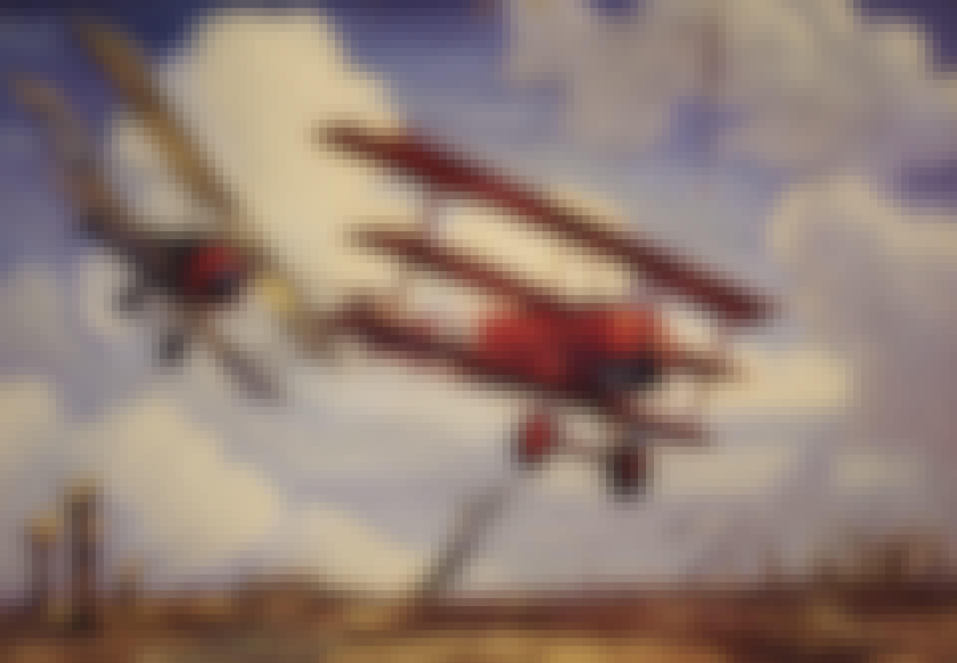 Manfred von Richthofen red baron dogfight