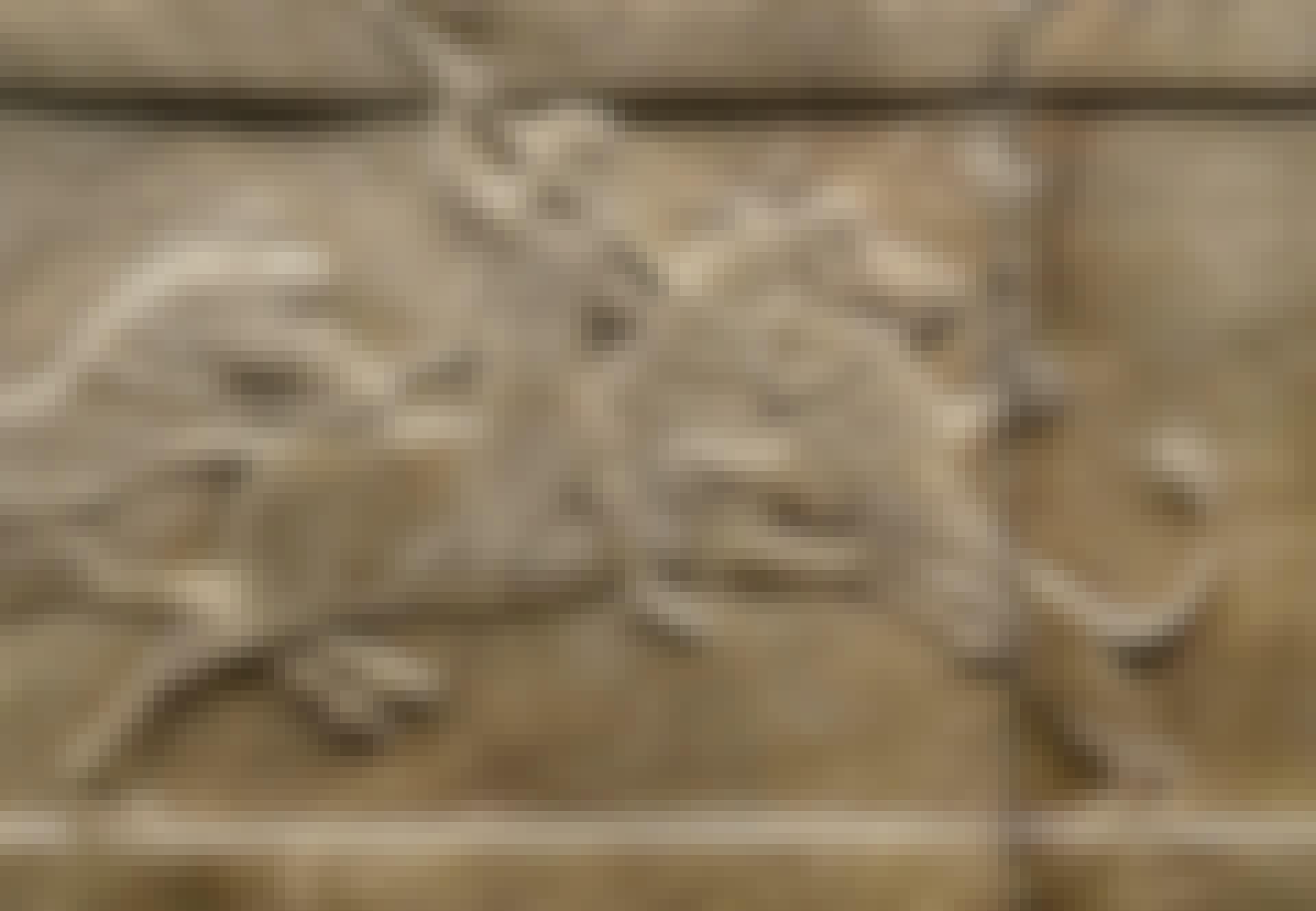 Assyrien klima tørke