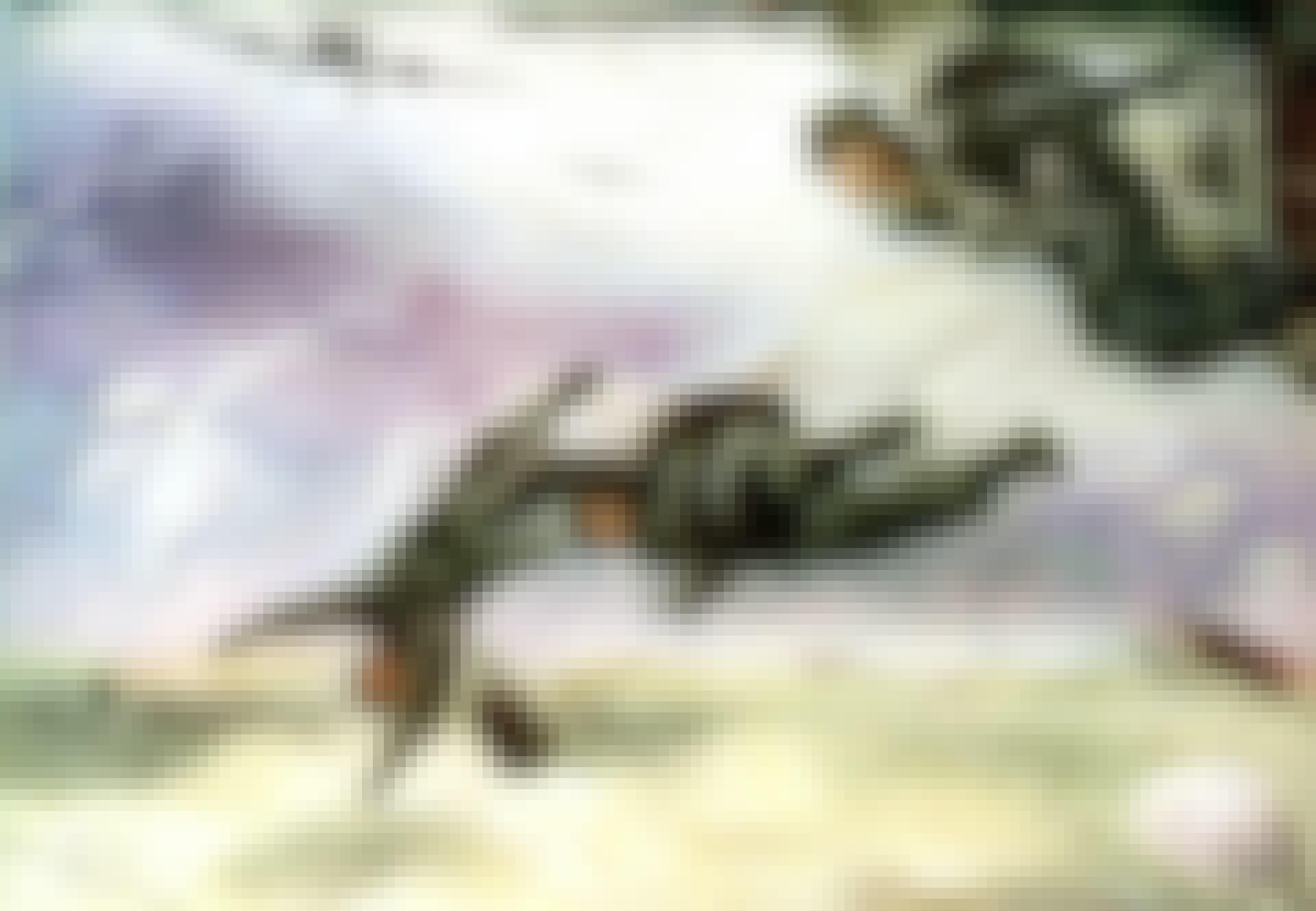 fallskärmsjägarenheter genomförde den första luftinvasionen när de invaderade danmark